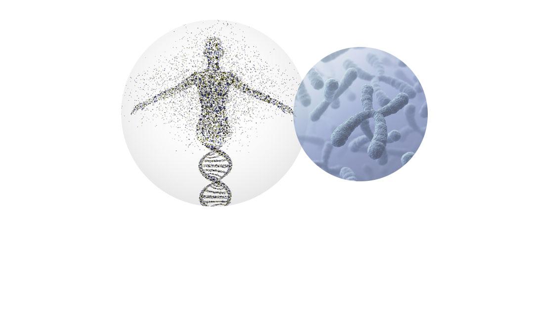 Kinderwunsch Genetik